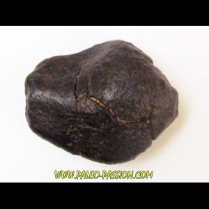 METEORITE Ordinary chondrite NWA (2)