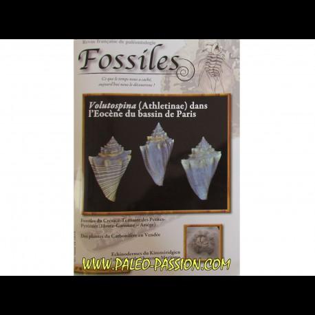 revue FOSSILES n°16 - octobre novembre decembre 2013