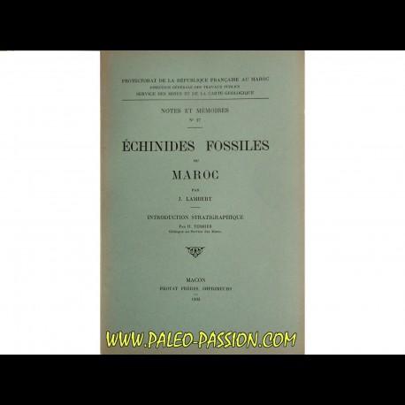 ECHINIDES fossiles du Maroc (n°27, 1933)