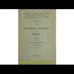 ECHINIDES fossiles du Maroc (n°39, 1937)