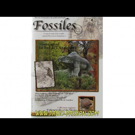 revue FOSSILES n°20 - octobre novembre decembre 2014