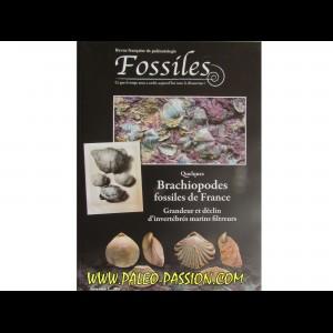 FOSSILES hors série 2013 LES FOSSILES DES VACHES NOIRES. Un gisement emblématique du Jurassiques à Villers-sur-Mer (NORMANDIE)