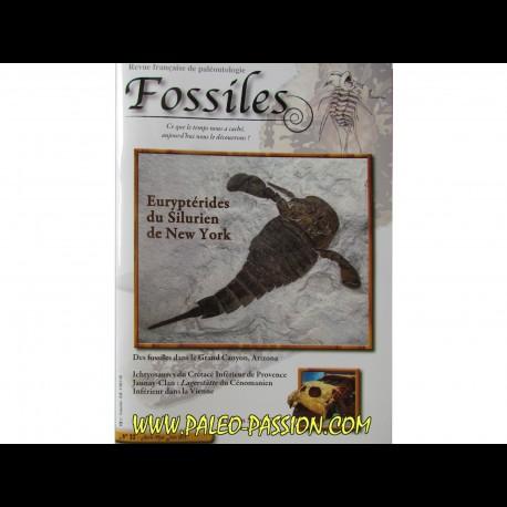 revue FOSSILES n°22 - avril mai juin 2015