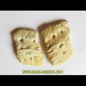 CROCODILE SKIN PLATE: Dyrosaurus phosphaticus (1)
