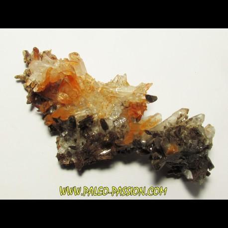 QUARTZ orange cluster (1)
