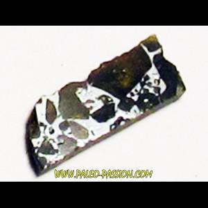 METEORITE pallasite seymcham (6)