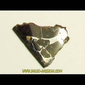 METEORITE pallasite seymcham (11)