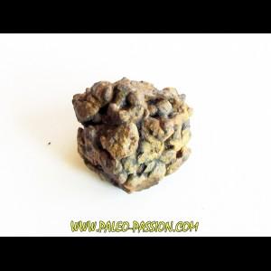 METEORITE pallasite SERICHO (11)