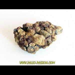 METEORITE pallasite SERICHO (13)