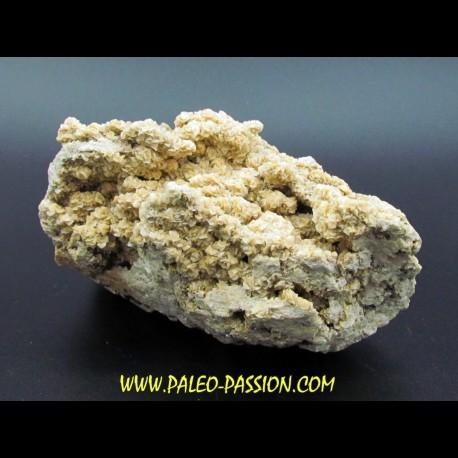 Calcite, Dolomite, ankerite // La Croix aux Mines, Alsace - FRANCE