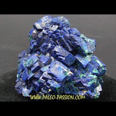 Azurite from  Chessy - France