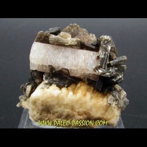 Apatite and Muscovite - Gilgit Division – PAKISTAN