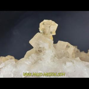 Fluorine incolore en stalactites -  Fonsante - France