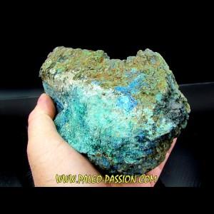 superbe bois fossile en azurite malachite