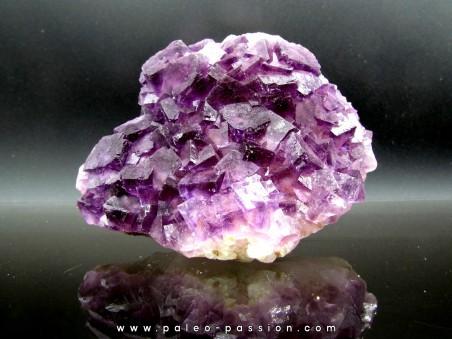 purple fluorite - Fonsante - FRANCE