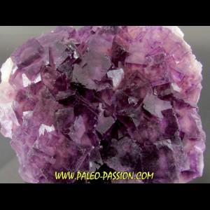 fluorine violette -  Fonsante - France