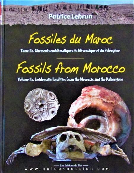 Fossiles du Maroc Volume 2a: Gisements emblématiques du Mésozoïque et du Cénozoïque