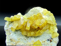 yellow Barytine  - Bou Azzer - Morocco