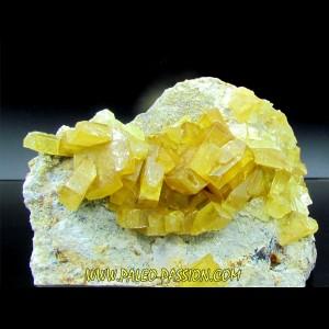 Barytine jaune // Bou Azzer - Maroc