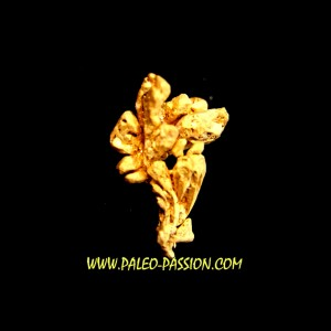 native gold  - Crystallized gold  - France