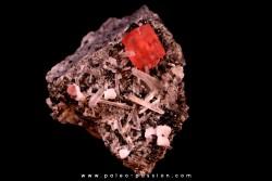 Rhodochrosite - Quartz // Sweet home - Colorado - USA