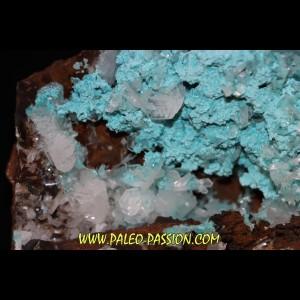 Hemimorphite on rosatite  ojuela mine, Mapimi, Mapimi, Durango, Mexico