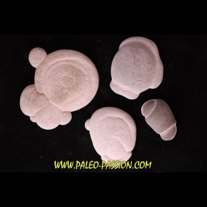 set of 4 fairy stones