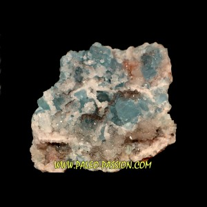 Blue Fluorite and quartz  En Bournegade - TARN - FRANCE