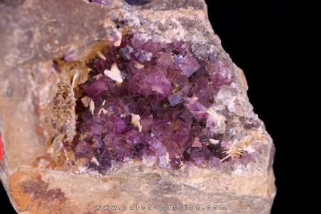 violet Fluorite - Bergheim, Alsace - FRANCE