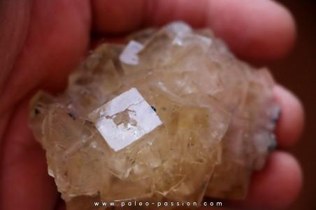 fluorite - Fonsante - FRANCE