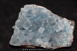 blue fluorite   Mont-Roc - FRANCE