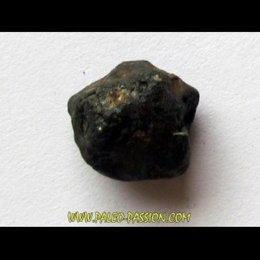 2- Chondrites