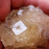 • Fluorine •  Un spécimen de fluorite de 7,5cm par 5,5cm environ. Il a été trouvé dans la mine de Fonsante, dans le Var, en France.  •  280€  Lien vers la boutique dans notre bio Minéraux / Halogénures  #geology #géologie #fluorite #minéraux #fluorine #minerals #rocks #geologyrocks #mineral #cristaux #crystals #igdaily #minerales #nature #paleopassion Ref. 3928