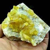 • Barytine jaune • Une barytine jaune de 9 par 7 cm environ (ex collection Leriche, 1987) . Elle a été trouvée à Bou Azzer, au Maroc. • 120€ Lien vers la boutique dans notre bio Minéraux / Sulfates #geology #minerals #rocks #geologyrocks #crystals #cristaux #mineral #igdaily #minerales #nature #paleopassion Ref. 3808